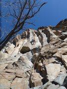 Rock Climbing Photo: Super Chronic-approaching the first crux