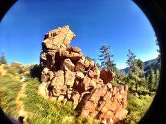 Rock Climbing Photo: the musician