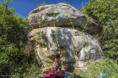 Rock Climbing Photo: King of bouldering boulder, West Eucalyptus sectio...