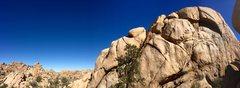 Rock Climbing Photo: Not for loan