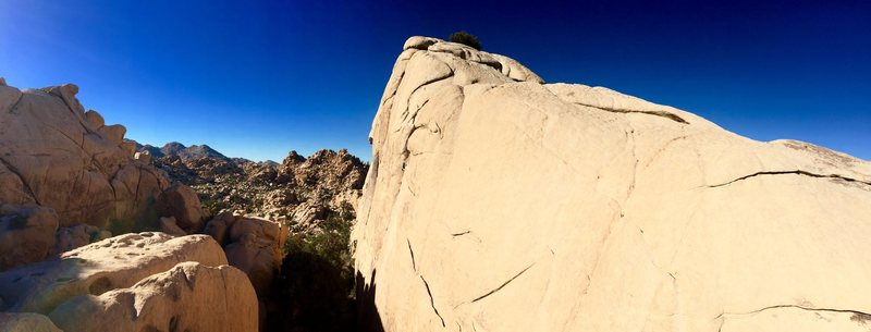 Rock Climbing Photo: The Sentinel west face