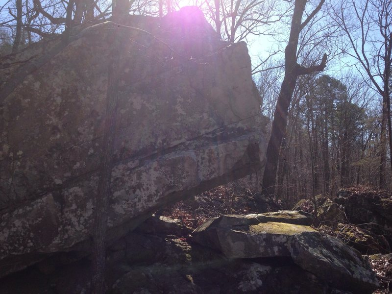 Rock Climbing Photo: The tree marks the starting point