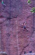 Rock Climbing Photo: Climbers on the Monolith