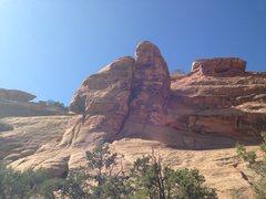 Rock Climbing Photo: Mollymawk Tower
