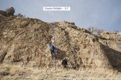 Rock Climbing Photo: Coyote Delight (February 2016)