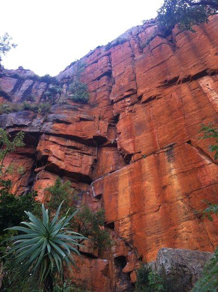 Beautiful orange quartzite. Very fun climb.