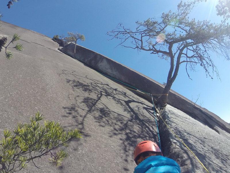 5 yo on his first multipitch climb