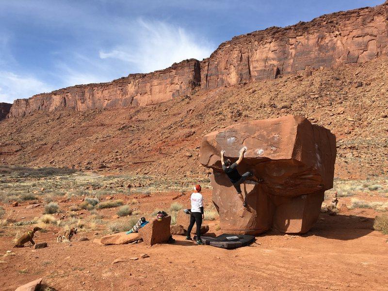 Rock Climbing Photo: Brown Power (V4)