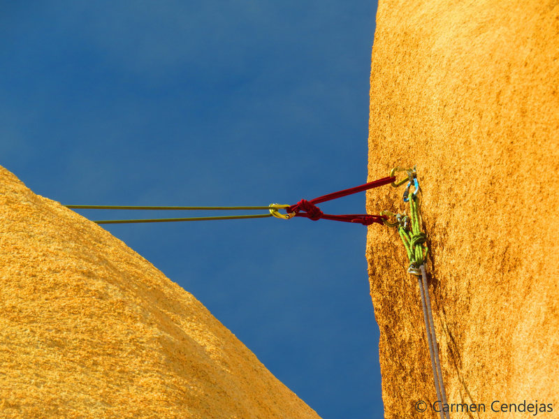 Rock Climbing Photo: Shared bolted anchor.
