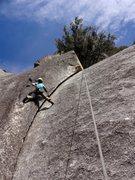 Rock Climbing Photo: Robin resting midway. Photo: Erick Davidson