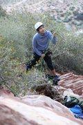 Rock Climbing Photo: red rocks