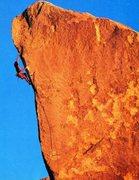 Rock Climbing Photo: Scott Cosgrove on The Cutting Edge (5.13+), Joshua...