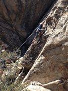 Rock Climbing Photo: Chloe's first granite slab