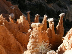 Rock Climbing Photo: The Hat Shop, in Bryce Canyon N.P.