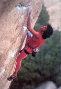 Rock Climbing Photo: Scott Cosgrove on Father Figure (5.12d), Joshua Tr...