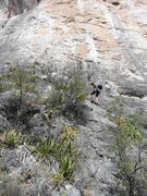 Rock Climbing Photo: Fixed line leading to start of route. There's a go...