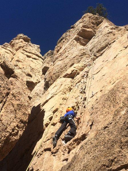 Rock Climbing Photo: Davis at shelf