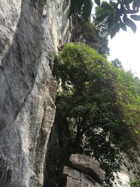 Rock Climbing Photo: Adam Pecan finding his way on My Way.... Photo cre...