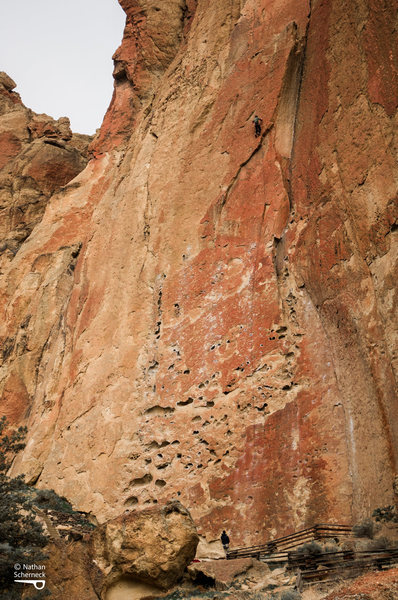 Rock Climbing Photo: Unknown climber on Cat Scan, 5.11a