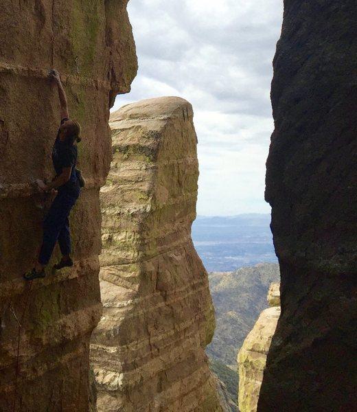 Rock Climbing Photo: Quartz Band Span