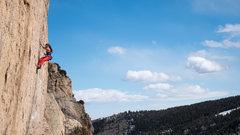 Rock Climbing Photo: Alana Benson on Shades