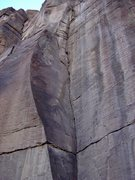 Rock Climbing Photo: Rainbow Canyon, NV.