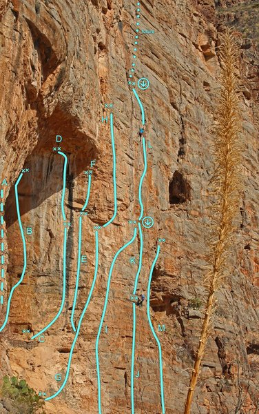 BAT CAVE (right) Topo<br> A- Midget Proof/M.P.Direct(in cave)<br> B- The Technician (5.13b)<br> C- MudBone (5.13c)<br> D- Bronner (5.14a)<br> E- 99 Problems (5.12d)<br> F- But a Pinch Isn&#39;t One (5.13c)<br> G- The Big Flake (5.10d)<br> H- Jornada Del Muerto(5.12d)<br> <br> [[Trojan Wall]]http://www.mountainproject.com/v/trojan-wall-right-of-bat-cave/110052447<br> I - Trojan Horse (5.11+)<br> J - Little Iliad (5.9)<br> K- The Iliad (5.10+)<br> L- The Odyssey (5.12) <br> M- Stones of Sisyphus (5.10)<br> N- Midas Touch (5.11-)<br>
