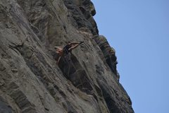 Rock Climbing Photo: Having a little fun flag-poling on a roped solo ru...