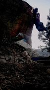 Rock Climbing Photo: Tree Dyno - Dark Side, Morrison, CO.