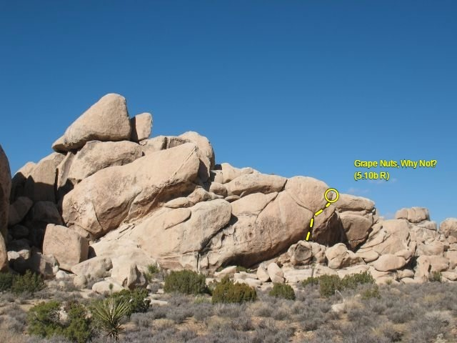 Rock Climbing Photo: Grape Nuts, Why Not? (5.10b R), Joshua Tree NP