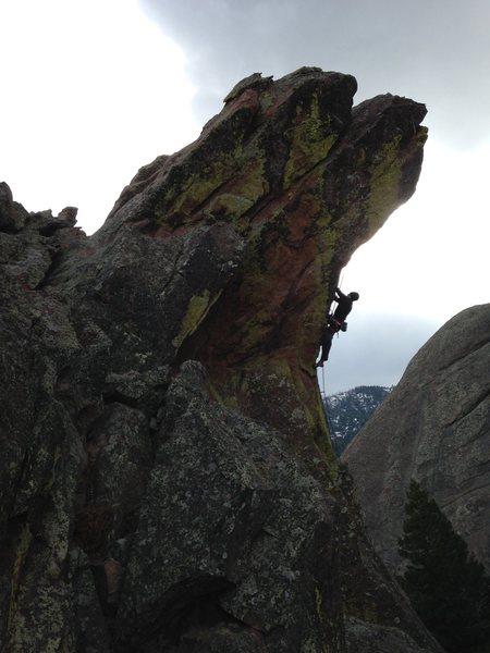 Curt MacNeill climbing into the sky on the Horn....