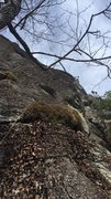 Rock Climbing Photo: View from the base of Hidden Crack