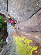 Rock Climbing Photo: Bear huggin