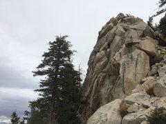 Rock Climbing Photo: peep dis foo climping that shit family