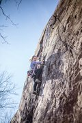 Climbing Arbor Day