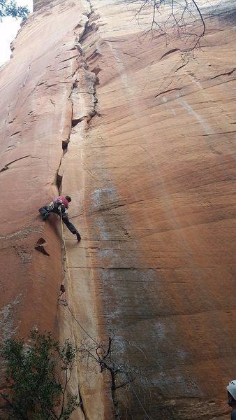 Rock Climbing Photo: Where the Mild Things Are