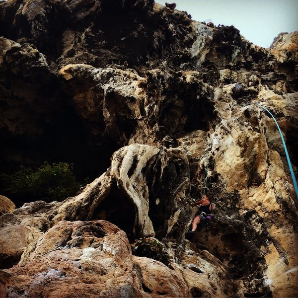 "Deb climbing ""Monkey Love"".  Fun climb. January 2016"