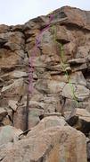 Rock Climbing Photo: Pink - Daphne Duck. Green - Huey Duck.