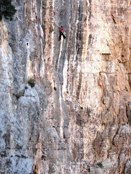 Rock Climbing Photo: Honeycomb (JBN climbing)