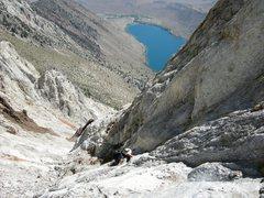 Rock Climbing Photo: Shad M scrambling up Laurel Mt.