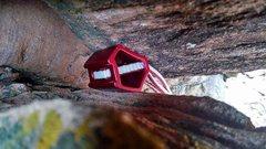 Rock Climbing Photo: Ground school 4