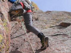 Rock Climbing Photo: iguanas