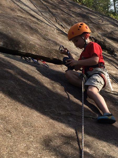Rock Climbing Photo: 3 piece Tricam anchor