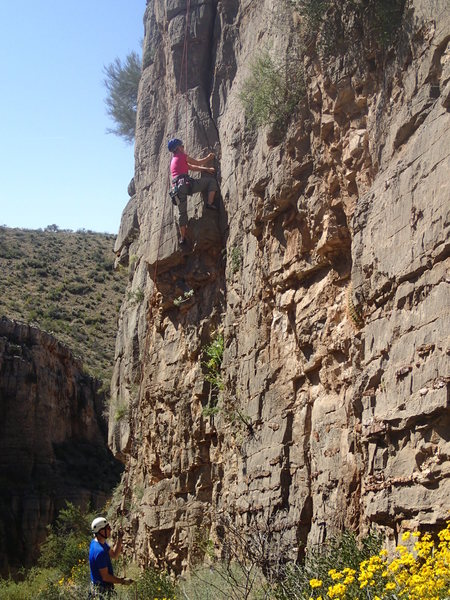 "Susan climbing ""Pinky and the Brain""."