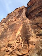 Rock Climbing Photo: Unknown Bolted Route