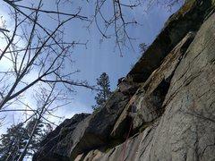Rock Climbing Photo: Climber on Janitors.