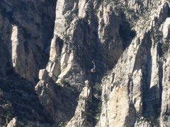 Rock Climbing Photo: Caught a picture of both trams about to cross each...