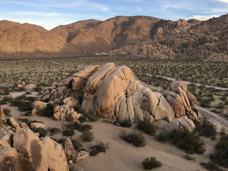 Rock Climbing Photo: View of Joshua Tree from Indian Cove