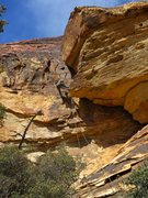 Rock Climbing Photo: The second rappel (if you are doing single rope ra...