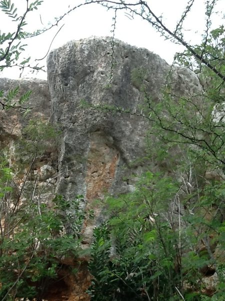 Big Boulder 30 ft  overang with few holes and jugs distant from each other, v 10 <br> <br>
